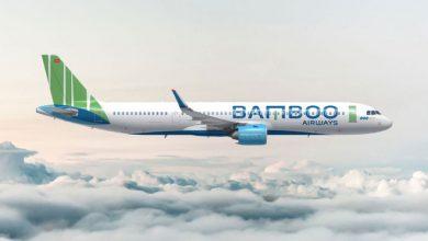 Photo of Bay Bamboo vô tư về giá giá cực sốc chỉ từ 94k.